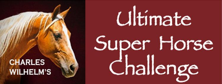 Ultimate Super Horse Challenge - Grand Finale