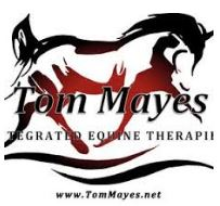 Tom Mayes - Integrated Equine Therapies